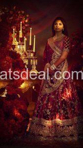 Isha Ambani wedding And Neeta Ambani