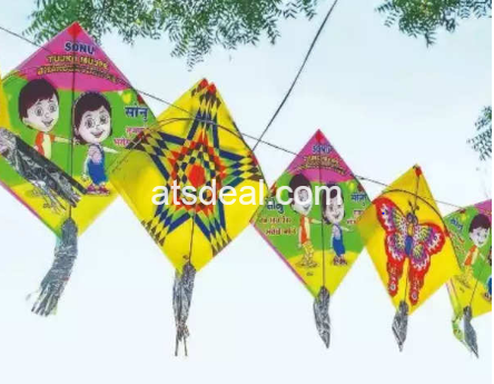 Makar Sankranti is a Hindu festival celebrated